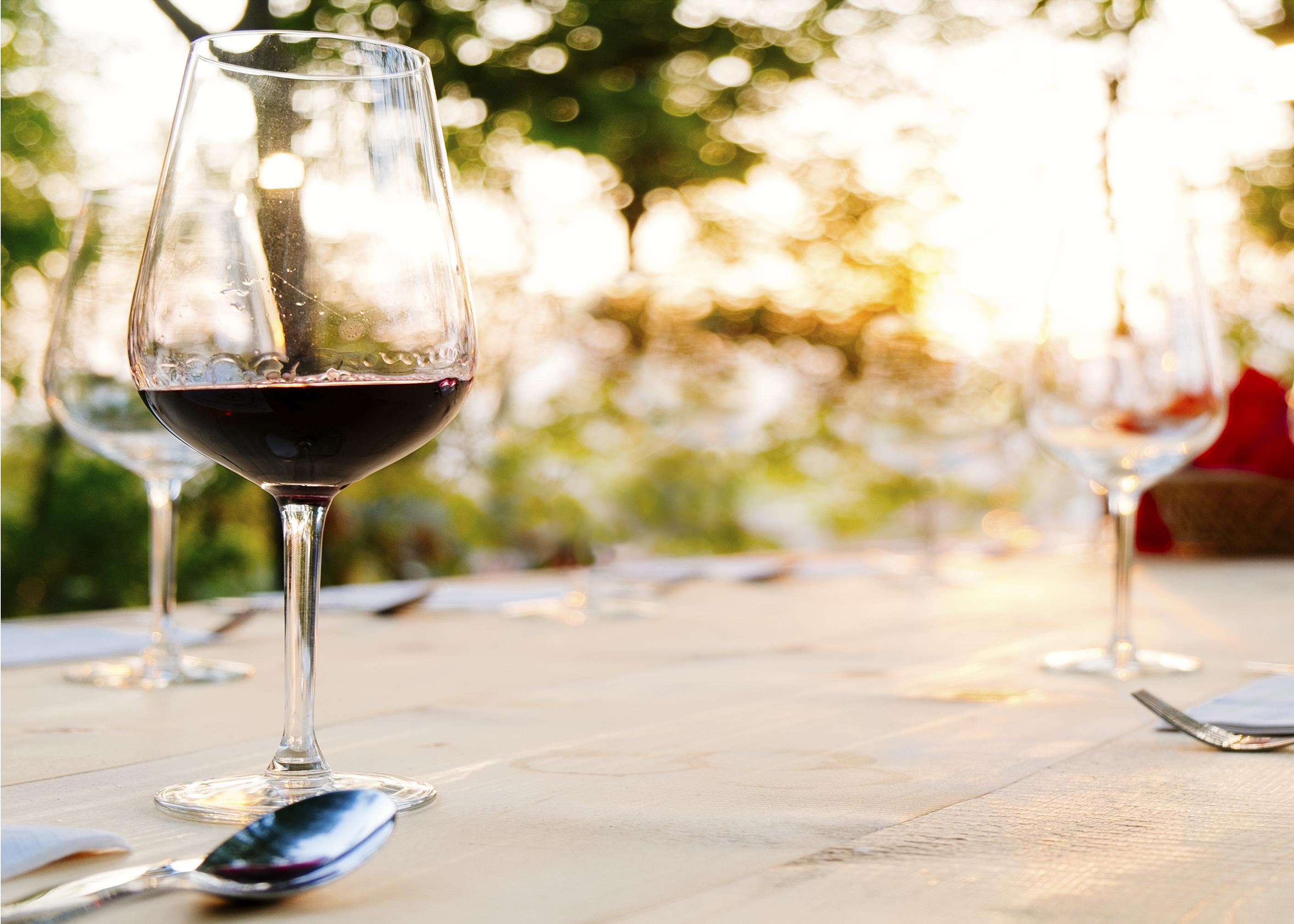 Savor Wine